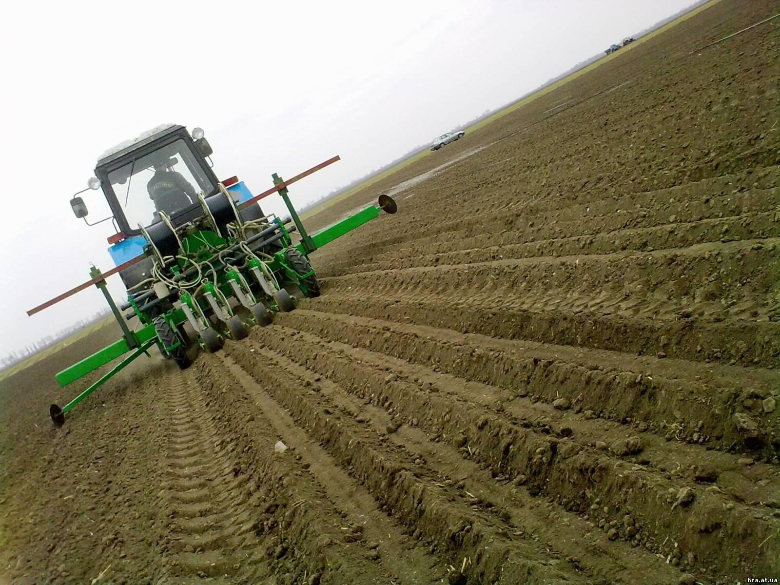 Выращивание зерновых культур ооо 5